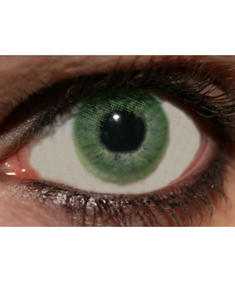 Innovision-One Tone-Green